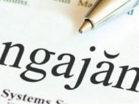 Zeci de posturi de bugetari scoase la concurs în județul Satu Mare
