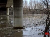 Milioane de flacoane plutesc pe Someș. Râul se curăță după dezastrul oamenilor (FOTO& VIDEO)
