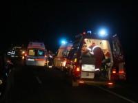 Doi sătmăreni răniți grav în urma unui accident provocat de mistreți
