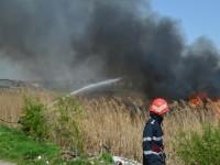 Incendiu pe un câmp lângă Satu Mare. Pompierii intervin