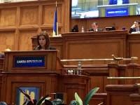 Ioana Bran propune burse de sprijin pentru elevii din învățământul dual