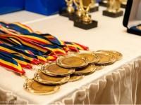 Ei vor reprezenta județul Satu Mare la fazele naționale ale olimpiadelor școlare